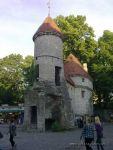 Honeyhair in Tallinn - #12