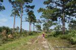 Honeyhair @ Florida 2012 - #55