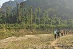 Honeyhair in Vietnam - #83