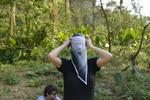 Honeyhair in Vietnam - #85
