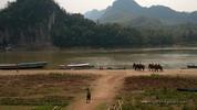 Honeyhair in Vietnam - #121